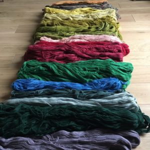laine colbert