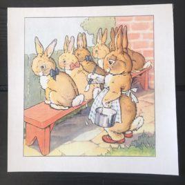 lapins peints